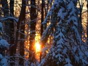 Golden Winter Sunset!