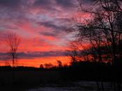 Clemson Morning