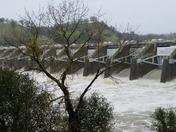 Nimbus Dam - All gates open