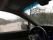 Consumes River...Latrobe Road  Jan 10, 2017