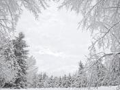 Ice + Snow