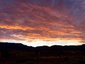 New Mexico pics