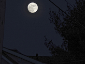 Moon 11 Jan 2017