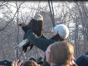 REGI Eagle Release