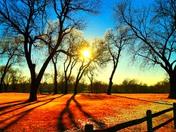 Sun set at Field Club Golf Course