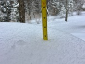 "3 1/2"" of snow in Effingham as of 8:20am"