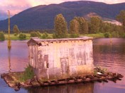The Shack on the Slough