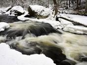 Walk Along Baboosic Brook