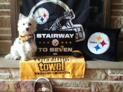 Gary WebberDescription: #HereWeGo !!!