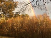 Rainbow in Dacusville Sc