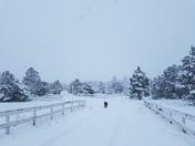 Duckett Ranch