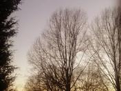 Sunset in Arcadia