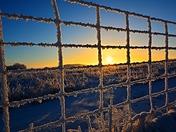 """ Frozen Fence """