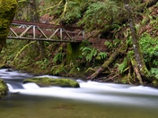 Bridges of Goldstream.
