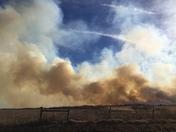 Grass fire west of Pocasset.