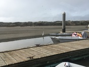 Sand bar encroaching on docks in Moss Landing