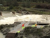 Salmon dam in Oroville ca