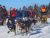Wilderness Sled Dog Races in Greenville, Maine.