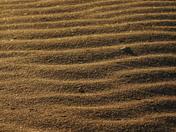 Sunrise Sandbar