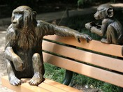 Monkey Statues on bench