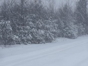 February 12 2017 snow storm in Mooers Ny