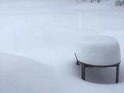 Got Snow