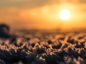 Ice crystals at sunrise