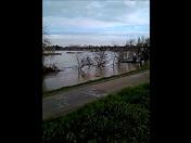 Feather River Yuba City