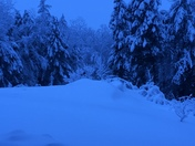 Snow storm 3017