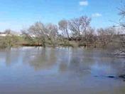 River watch modesto