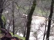 Bear River Weir at Camp Farwest Lake