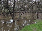 Dry Creek,,Modesto