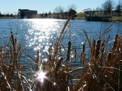 Sunny February Afternoon at Lakeside Hills