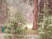 Snow in Grass Valley 2/23/2017