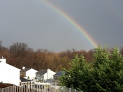 After the storm!