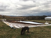 Saturday afternoon storm damage