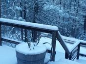 Sonora Snow