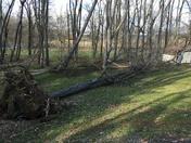 Tornado destructions