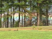Rainbow taken by Linda Lee in Kosciusko, MS
