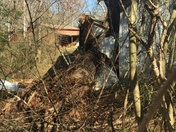 Damage from storm last night, around our farm