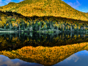 Reflecting Autumn