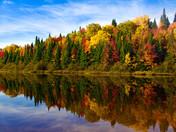 Land Meets Lake