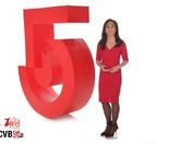 WCVB National Wear Red Day Promo - February 3, 2017