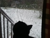 baazinga watching the snow