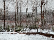 Snow in TR!