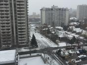Spring Break Snow storm.