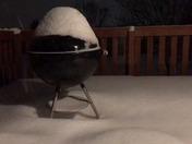 Snow Lapse
