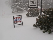 Voting Day in Pittsfield