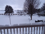 Snow storm Stella
