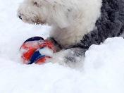 Buckley's first big snow!